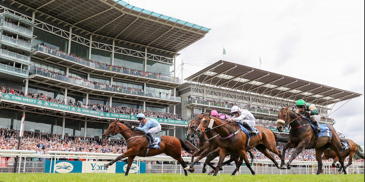 Copper Knight Listed York 13th July 2019